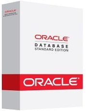 Oracle Database Standard Edition 11g