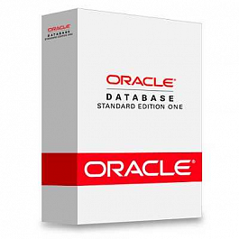 Oracle Standard Edition One